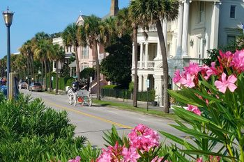 Pictures of Charleston Attractions, Waterfront Park