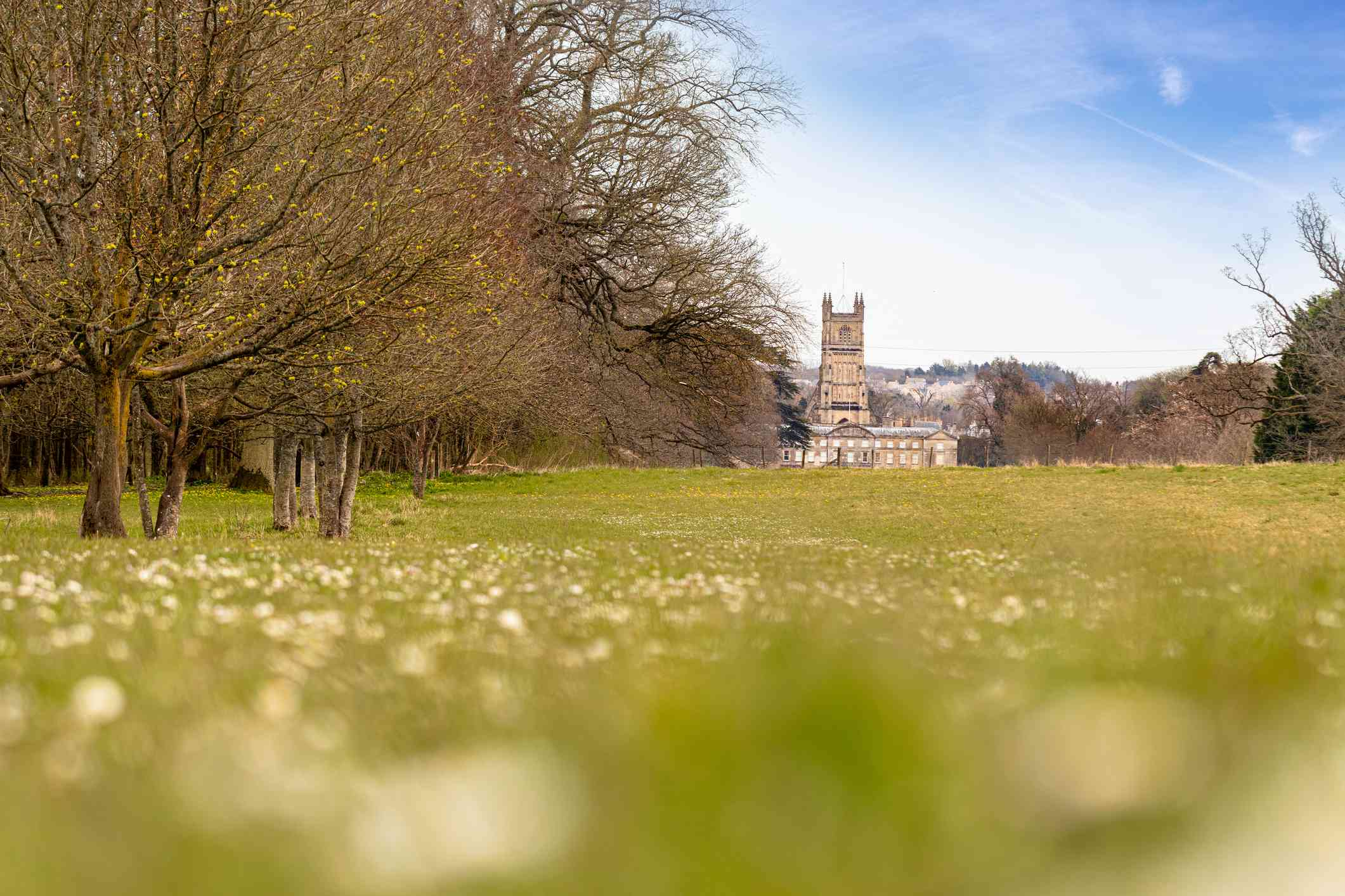 View of St John the Baptist Parish Church from Cirencester Park, Cirencester, Gloucestershire, UK. The Cotswolds on an early spring day