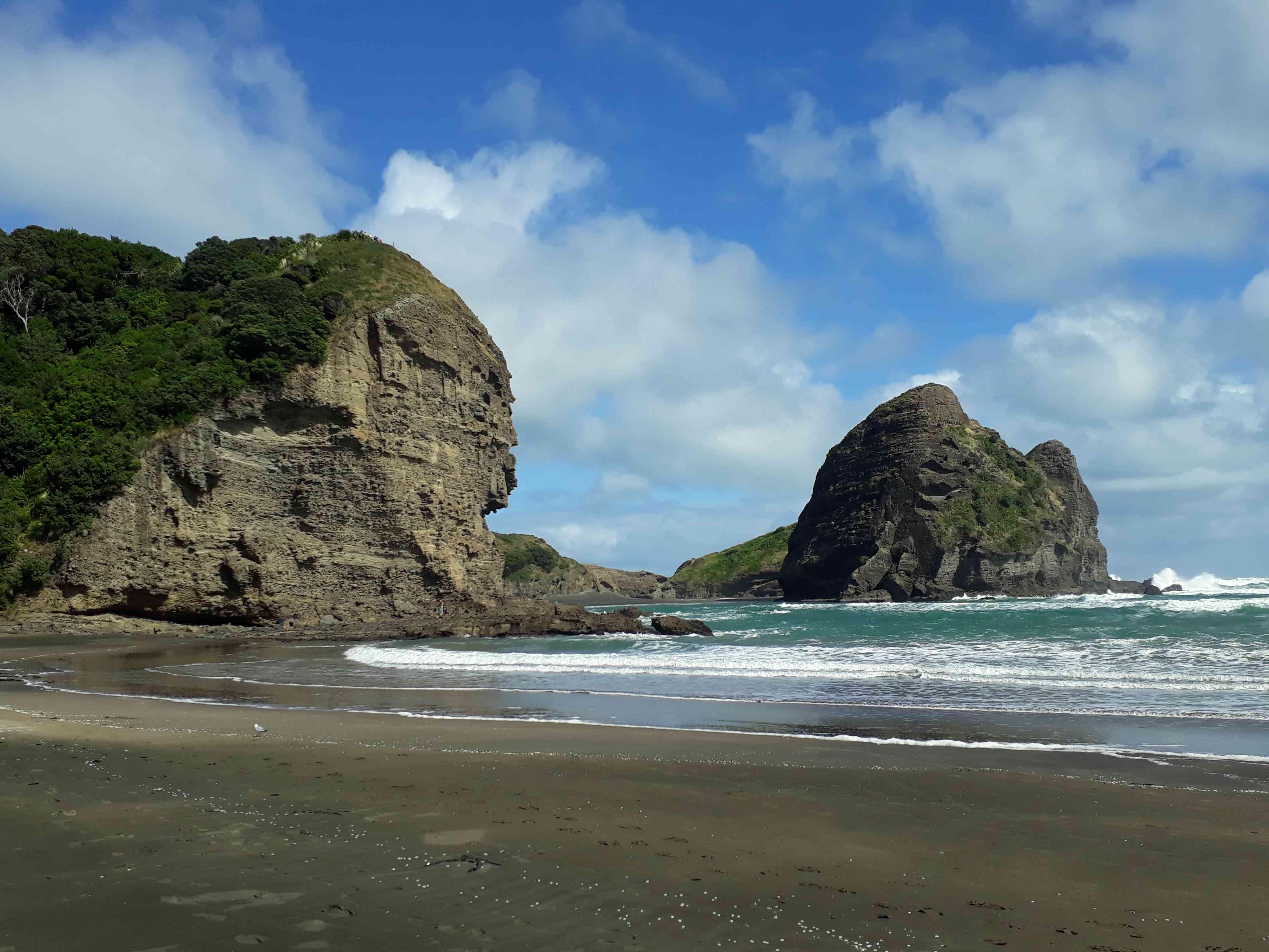 cliffs beside a black sand beach at Piha