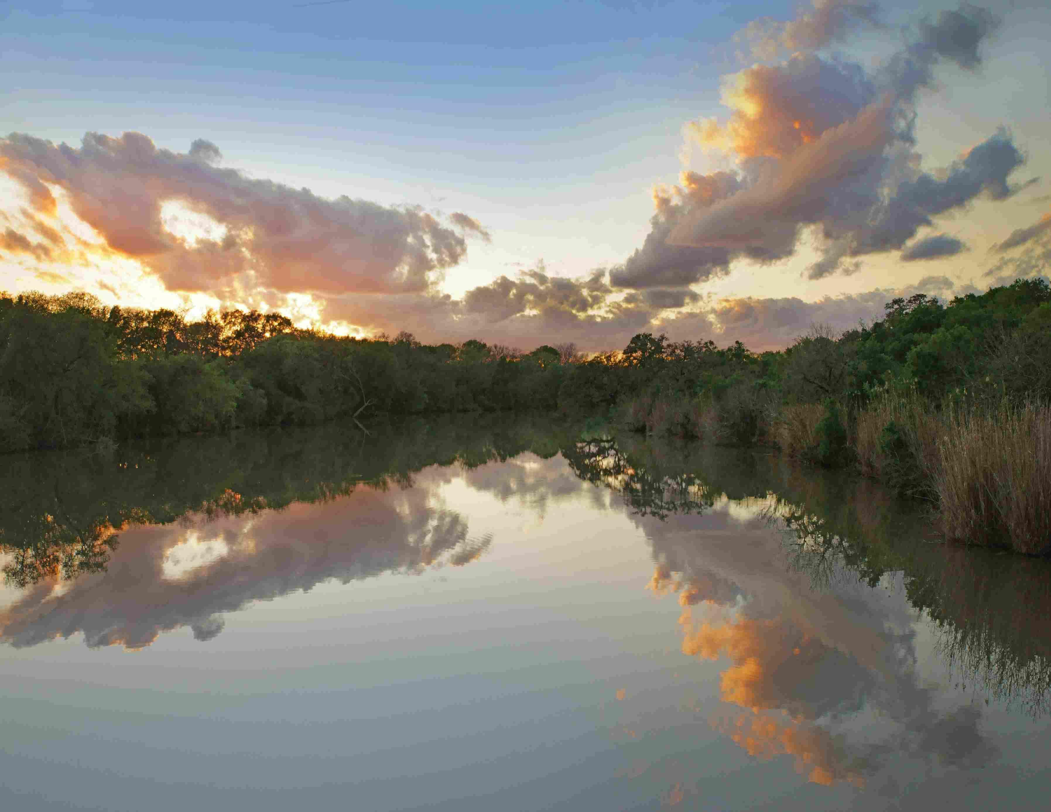 Lagoon at Palmetto State Park, Texas, USA