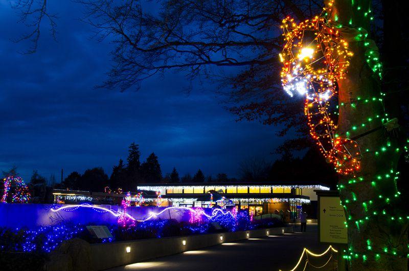 Woodland Park Zoo wildlights