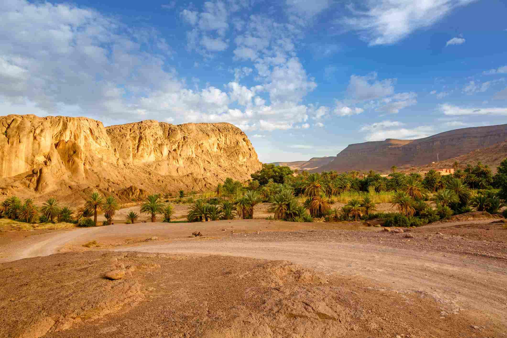 Fint Oasis near Ouarzazate, Morocco