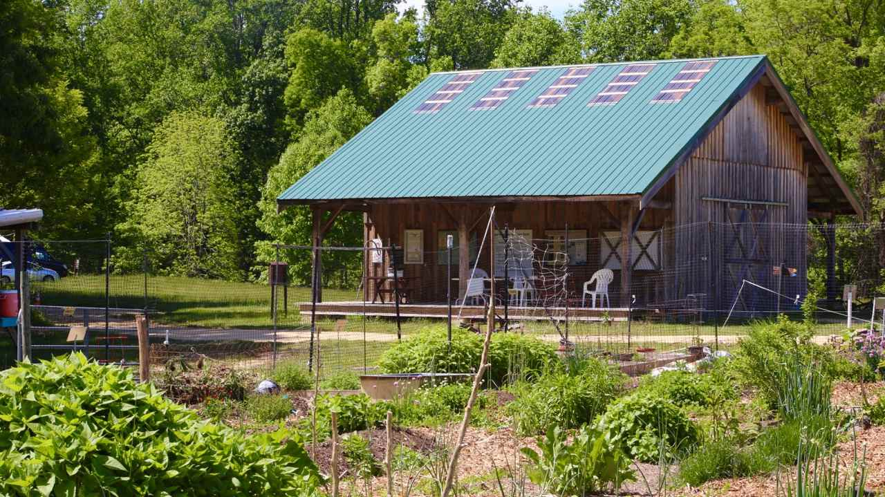 American Chestnut Land Trust