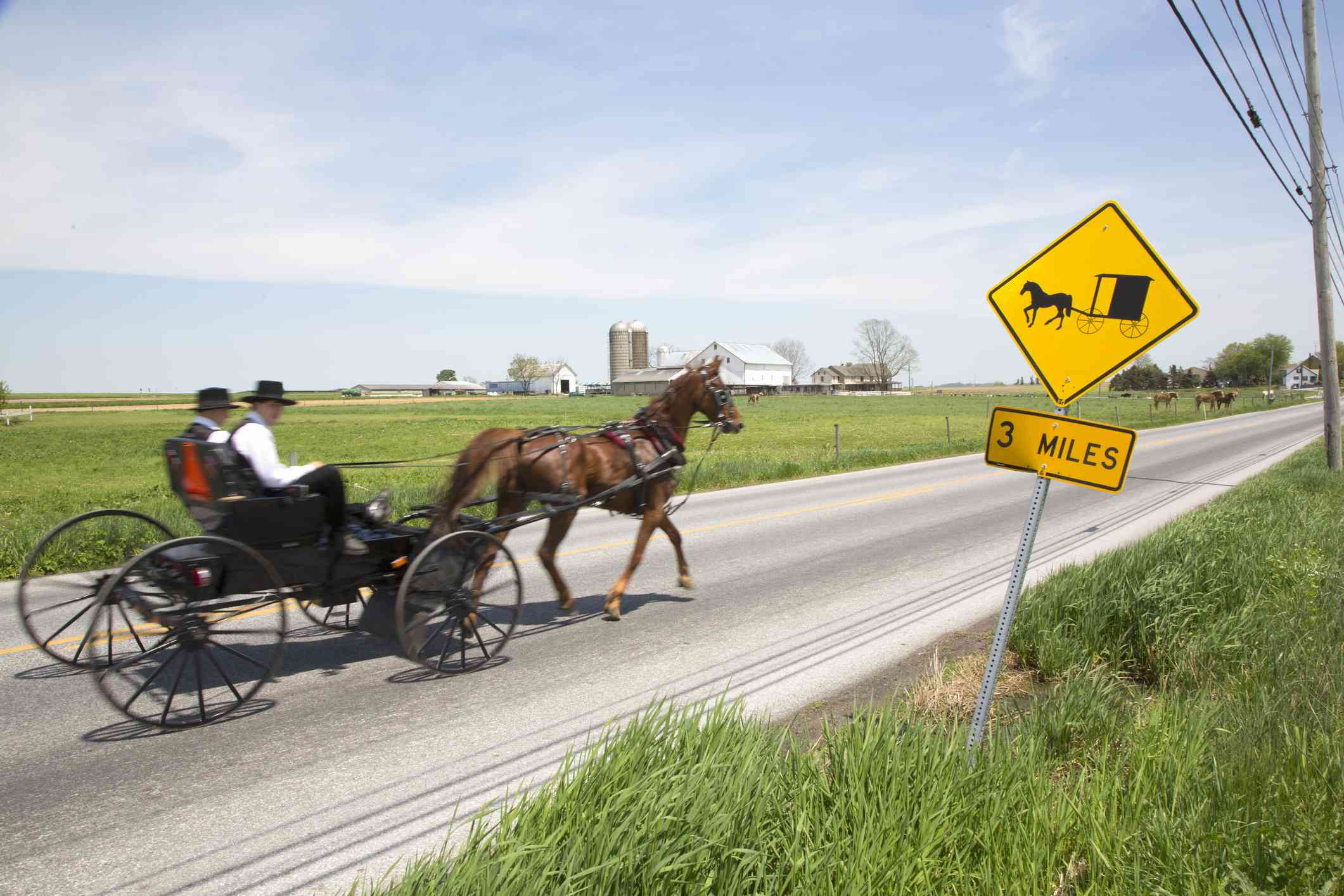 Lancaster county Amish horse and buggy