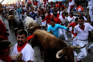 Learn the Pamplona bull run route so you don't get run into a fence!