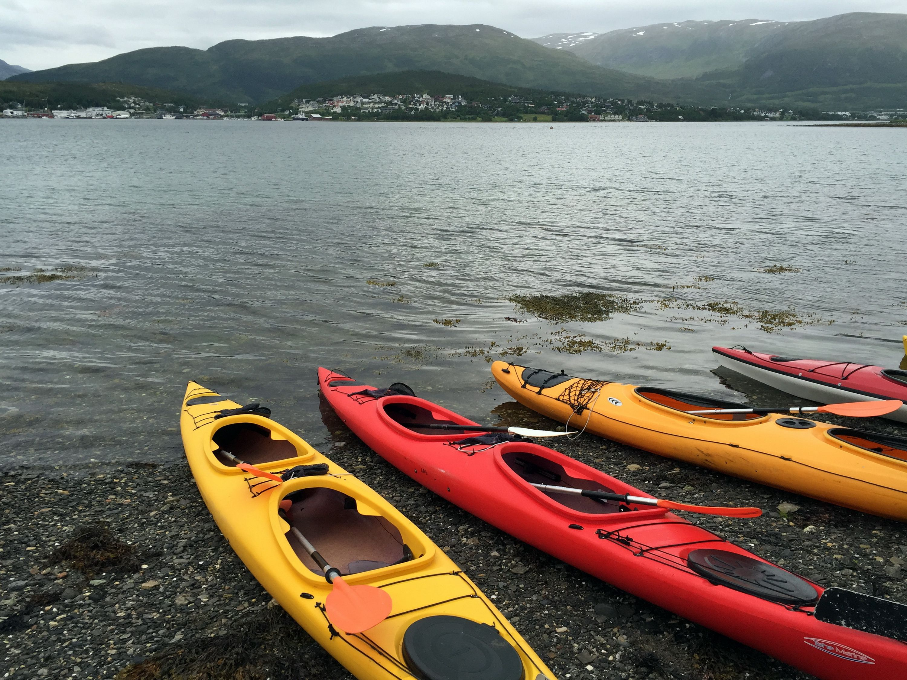 Four red and yellow kayaks in water