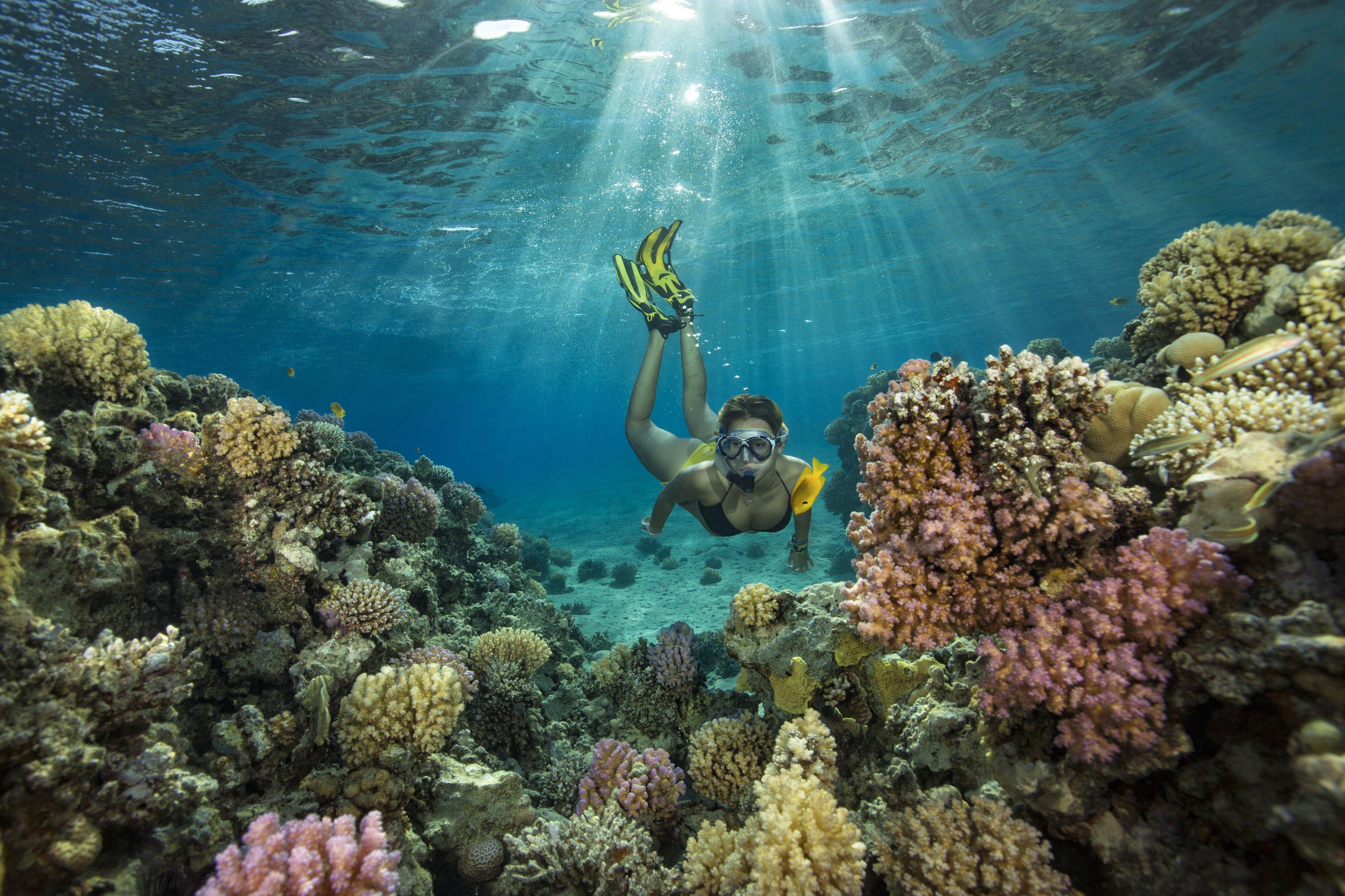 Egipto, Mar Rojo, Hurghada, adolescente snorkeling en arrecifes de coral