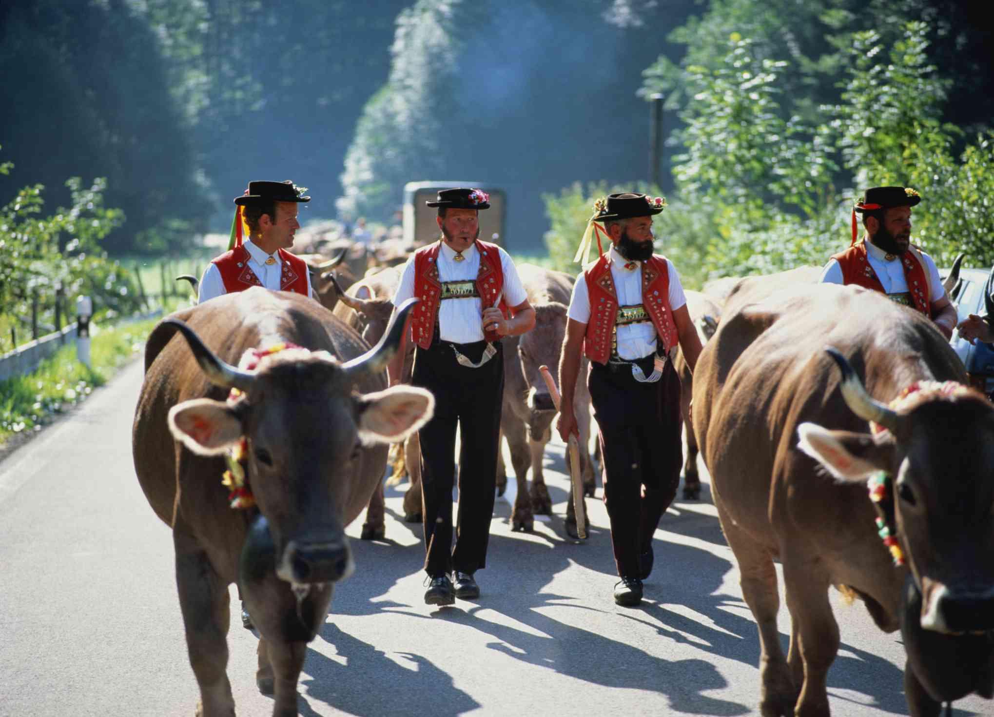 Men in traditional costume, Appenzell, Switzerland