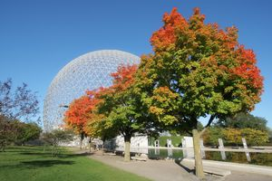 Montreal Biosphere Park with a row of trees with green and red leaves