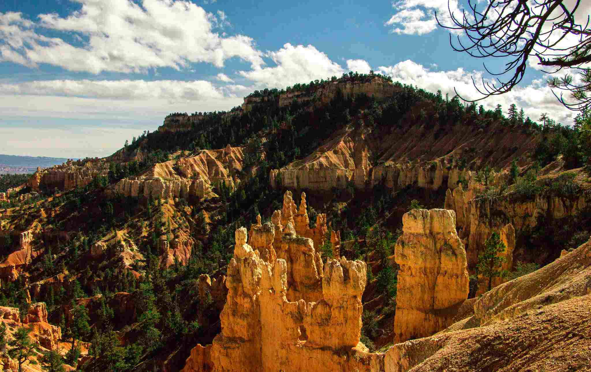Southwest Utah (With images) | Snow canyon state park