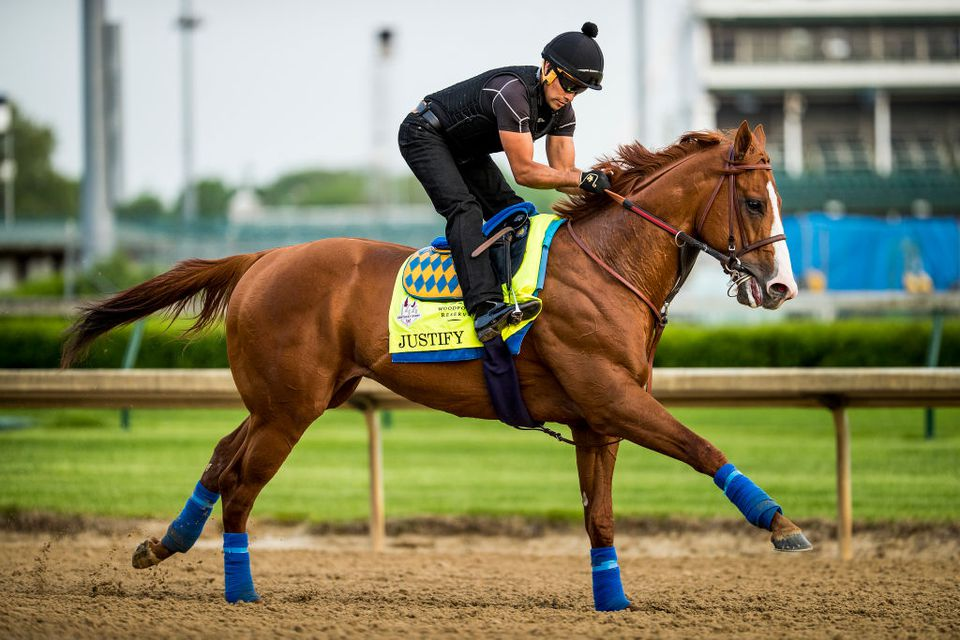 Justify, a horse, exercises in preparation for the Kentucky Derby at Churchill Downs