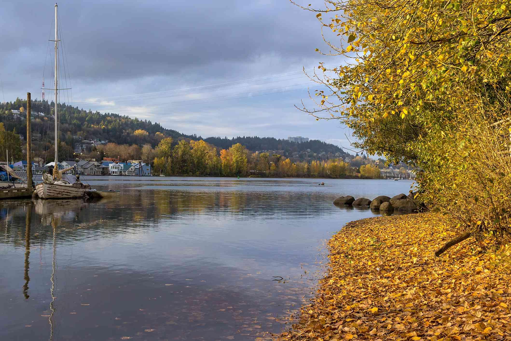 Marina along Willamette River at Sellwood Riverfront Park in Portland Oregon in fall season