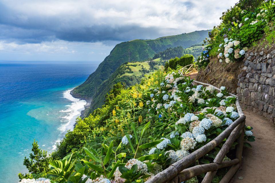 Ruta costera con hortensias, Sao Miguel, Azores, Portugal