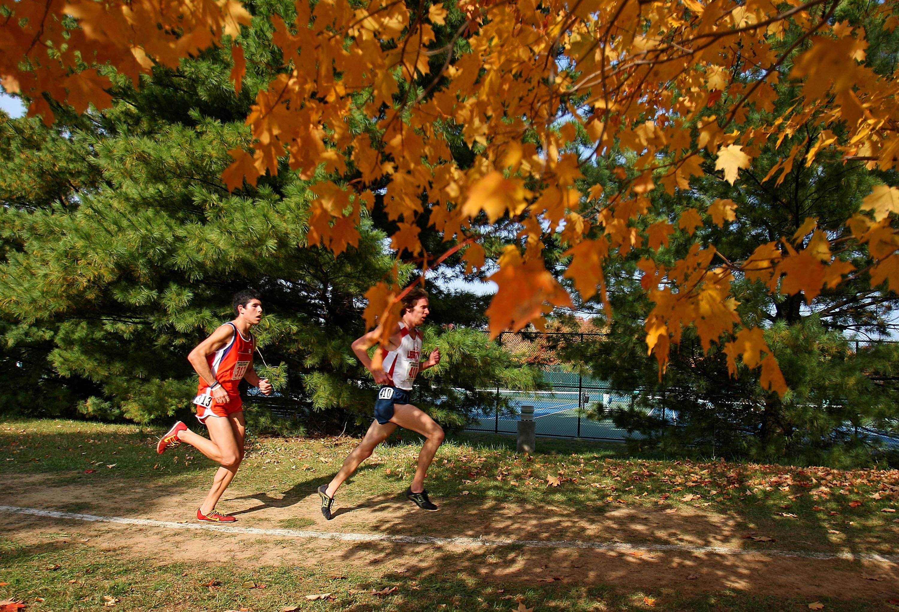 Runners compete during the Men's NCAA Southeast Regional Cross Country meet on November 10, 2007 at E.P. Sawyer State Park in Louisville, Kentucky