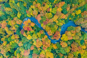 Fall Foliage Road Trip Vermont