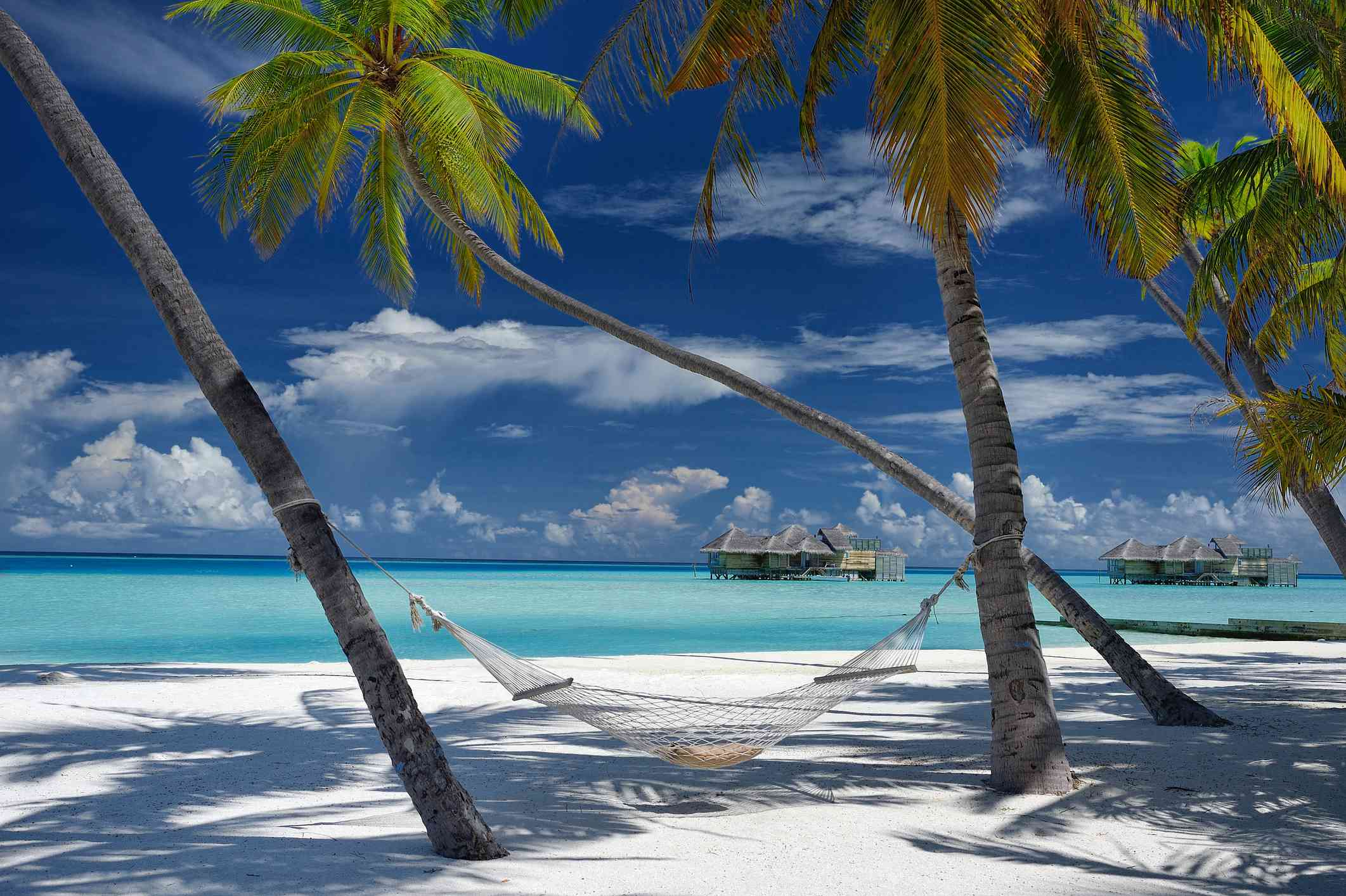 White sand and turquoise sea at Gili Lankanfushi in the Maldives