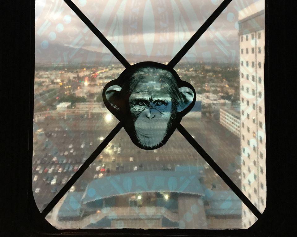 sls vegas monkey