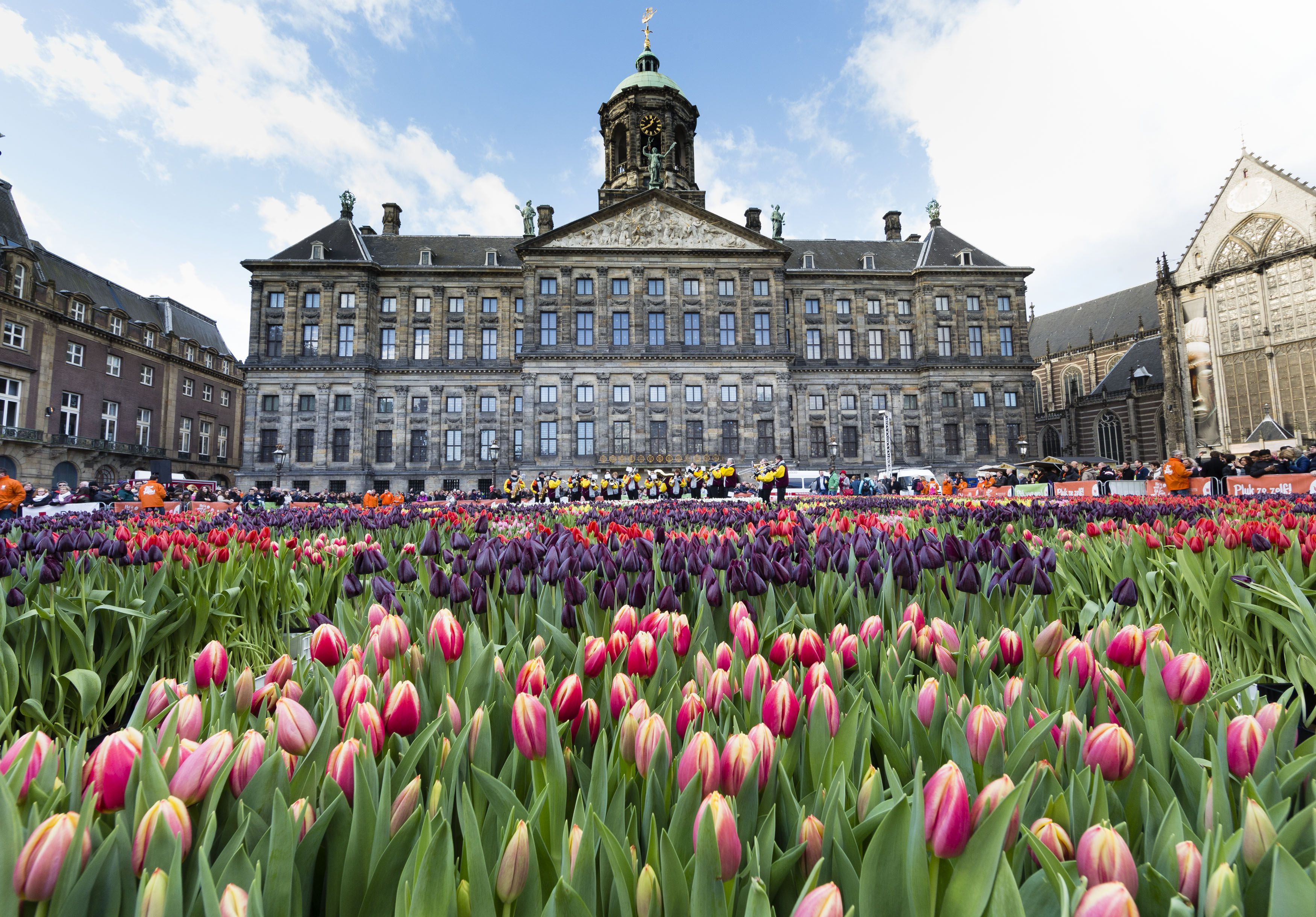 Exterior of the National Palace with tulips in the foreground