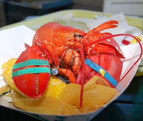 Lobster Photo - Thurston's Lobster