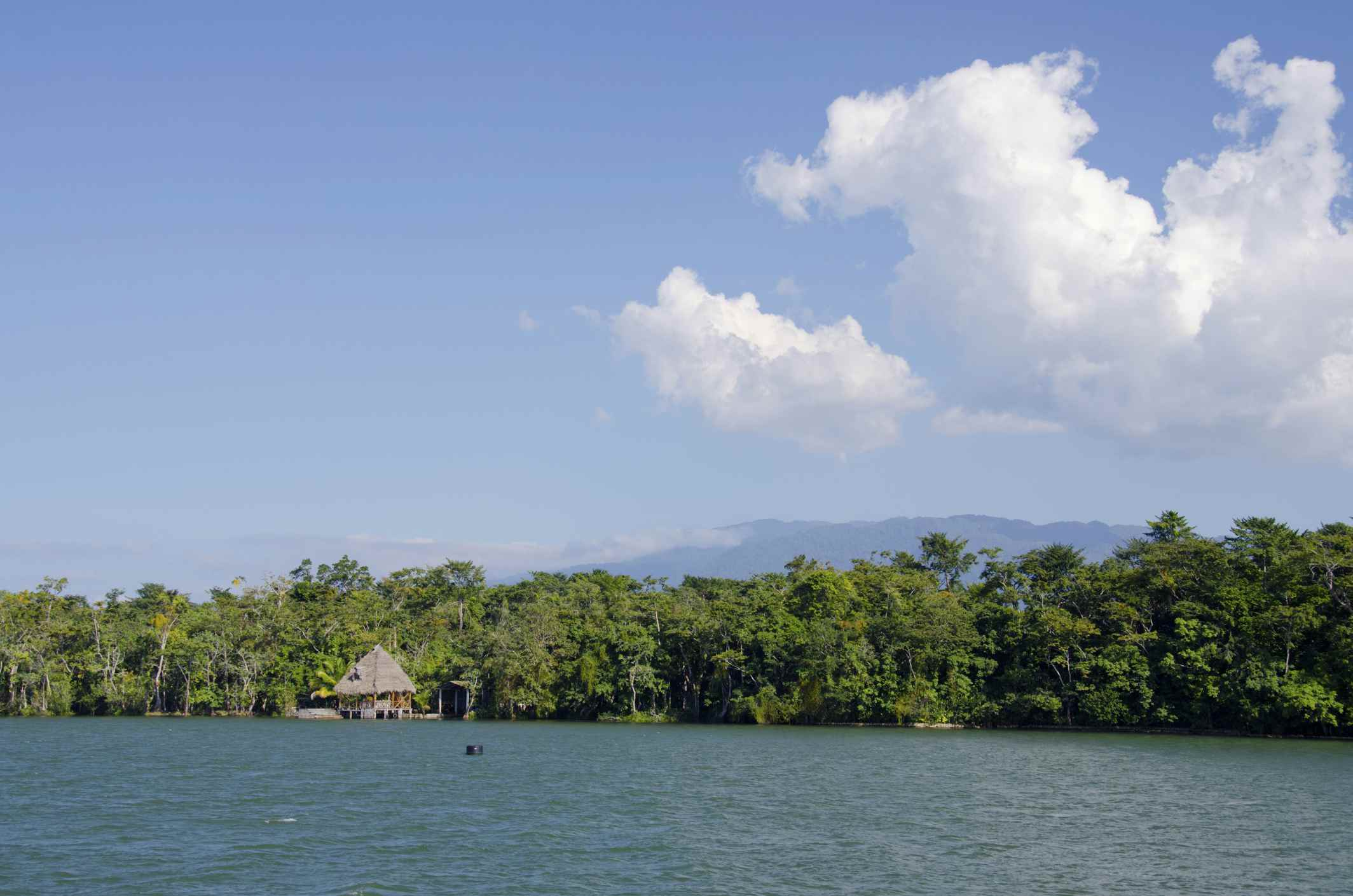 Typical riverside view of Rio Dulce, Rio Dulce National Park, Guatemala