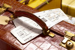 crocodile skin suitcase and boarding pass