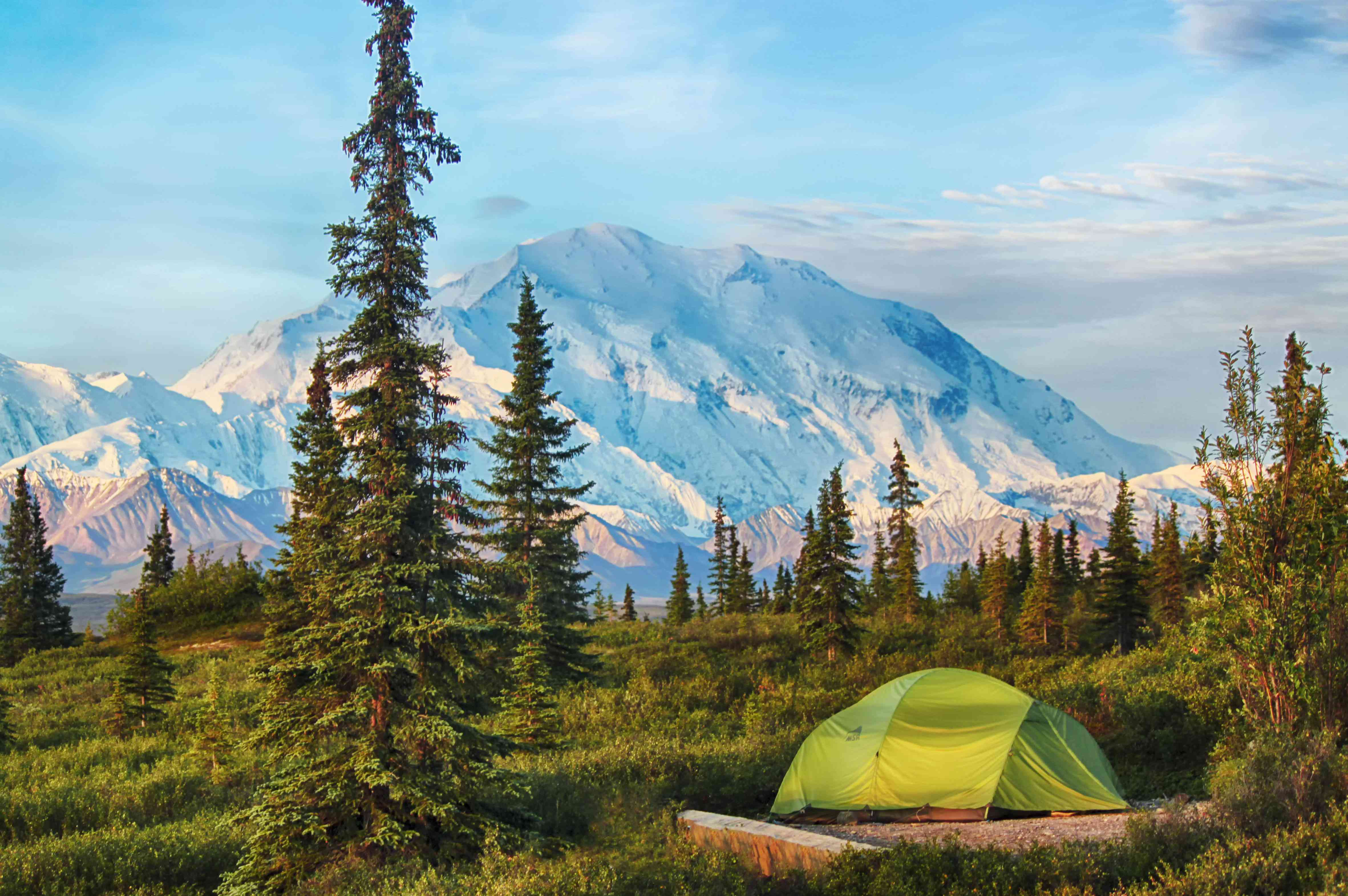 Camping in Denali National Park, Alaska, USA