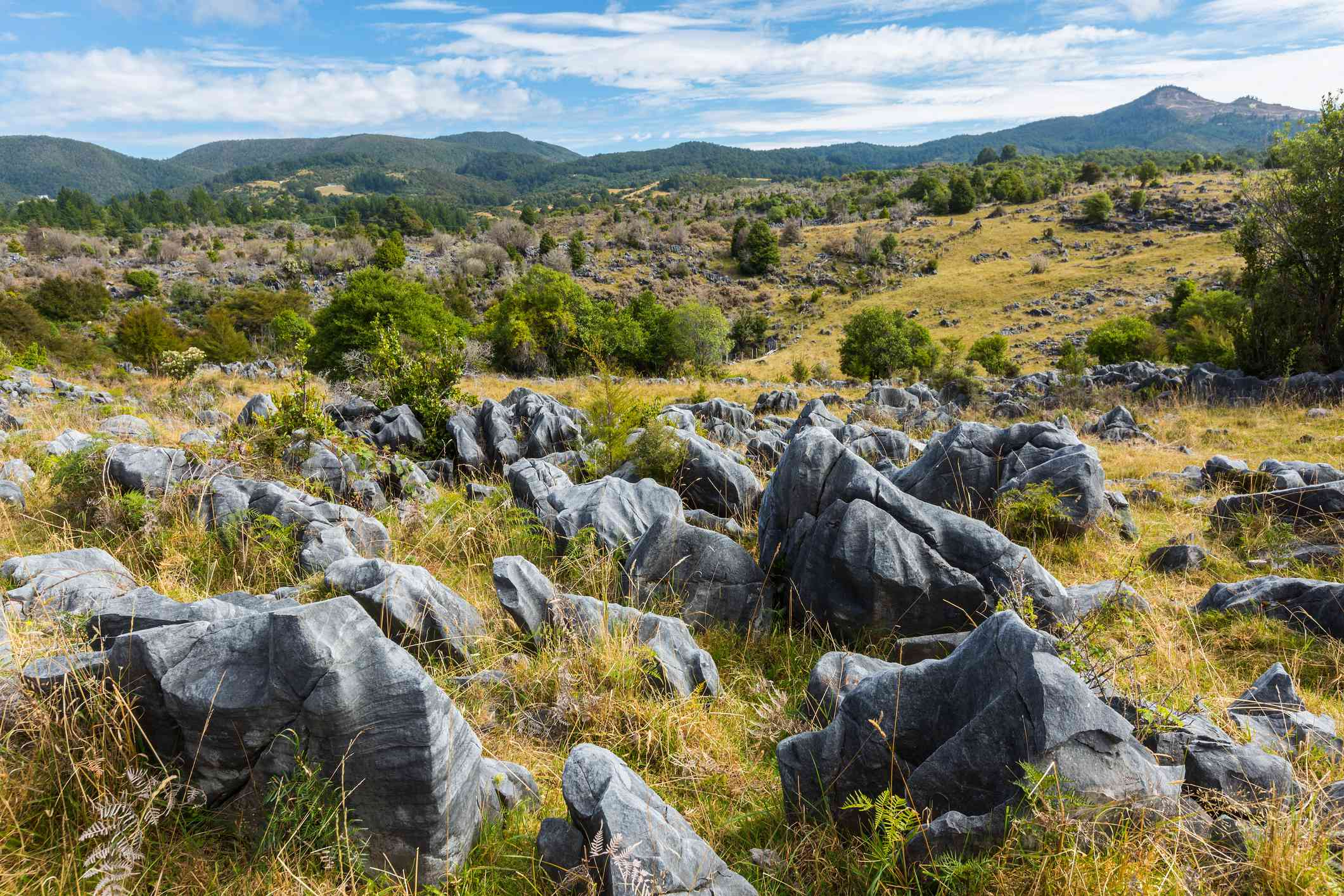 rocky landscape Takaka Hill