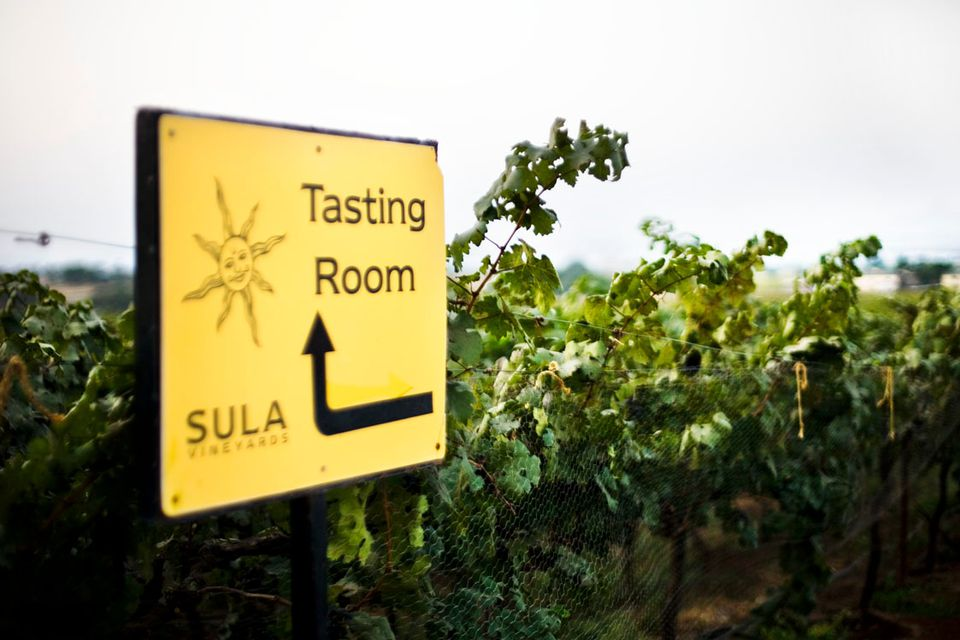 Sula vineyards.