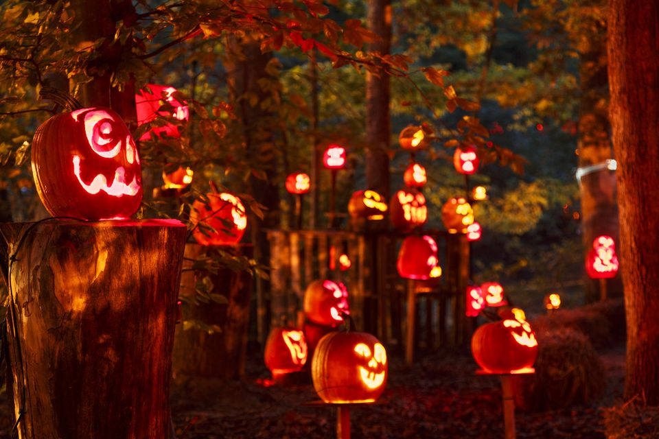 Halloween in Louisville, KY celebrated with jack-o-lanterns on pedestals