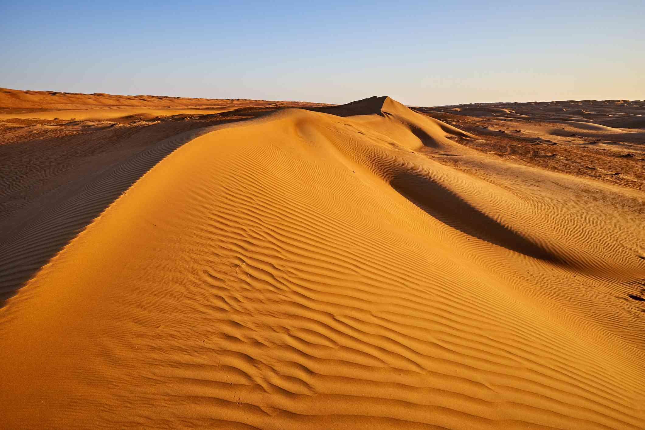 Large sand dune in golden light Sharqiya Sands/Wahibia Sands