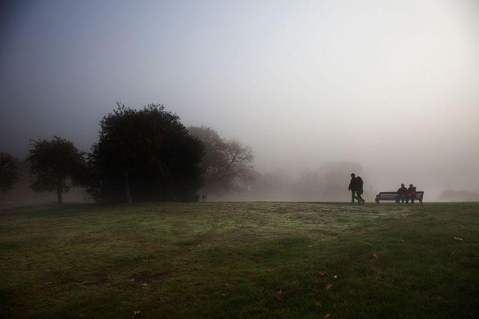 London Fog in Greenwich Park