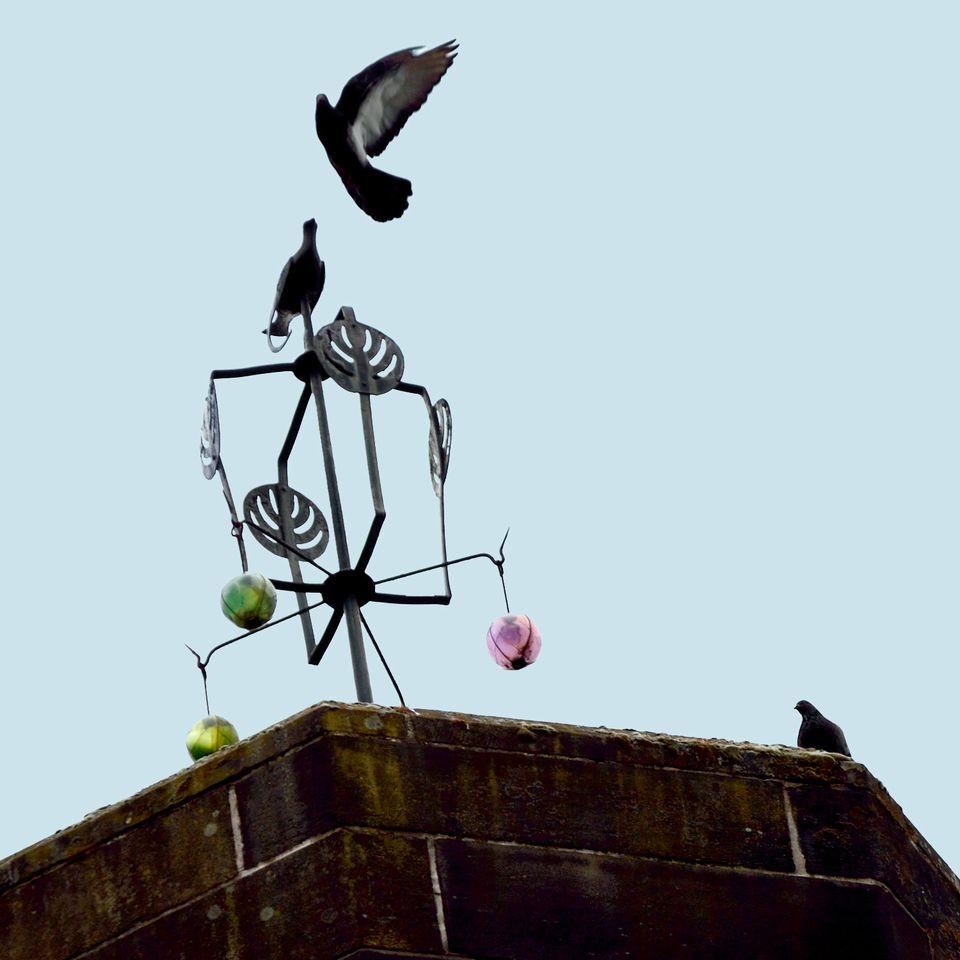 Birds on Glasgow School of Art