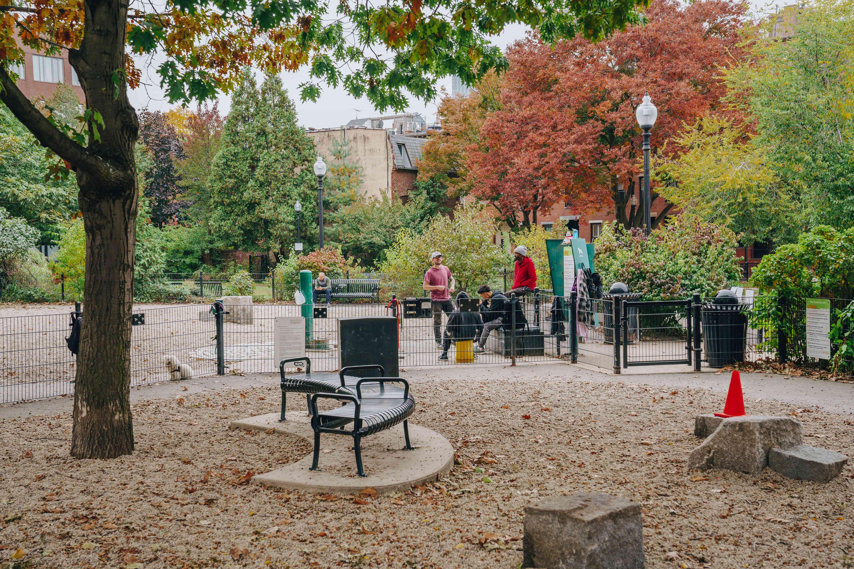Peter's Park Dog Park