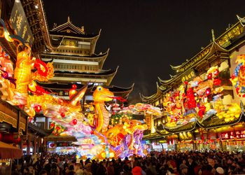 Chinese New Year / Spring Festival 2013
