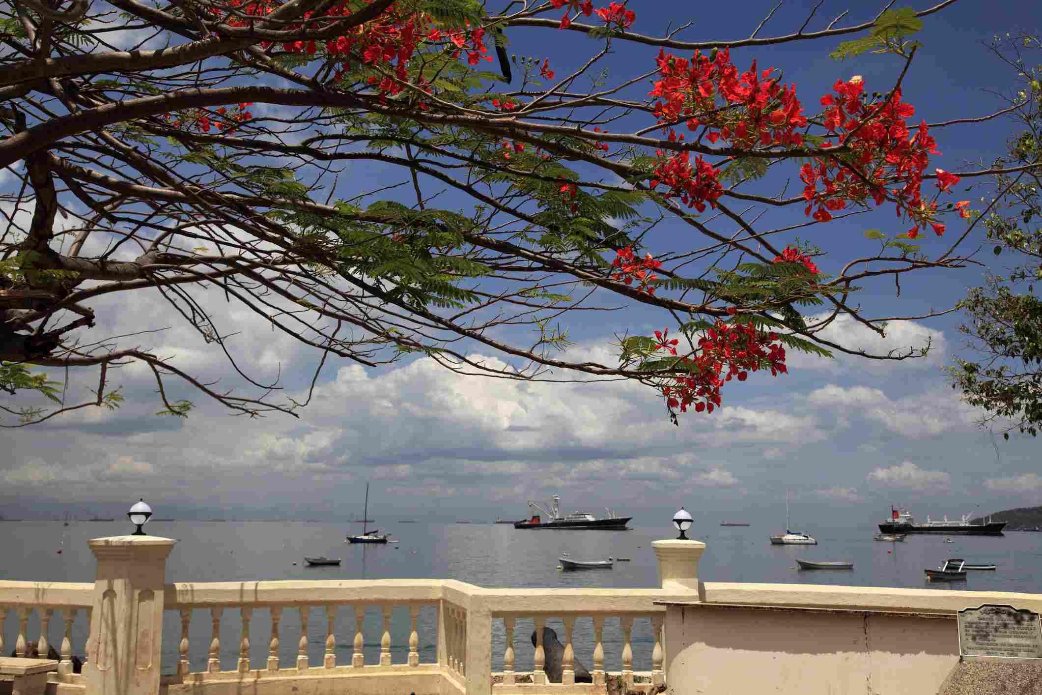 Waterfront promenade on the shore of Taboga Island