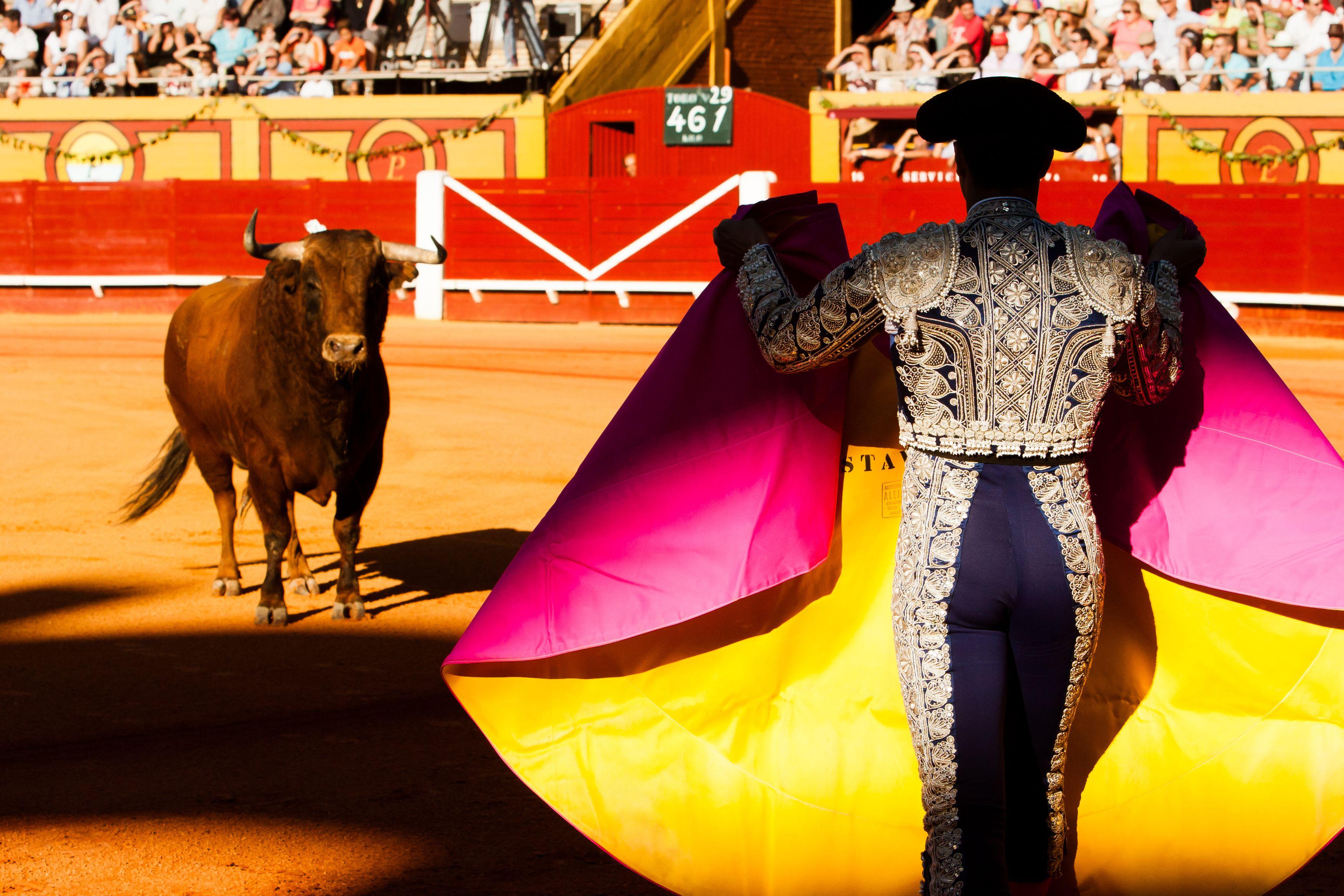 Bullfighting in Andalusia, Spain