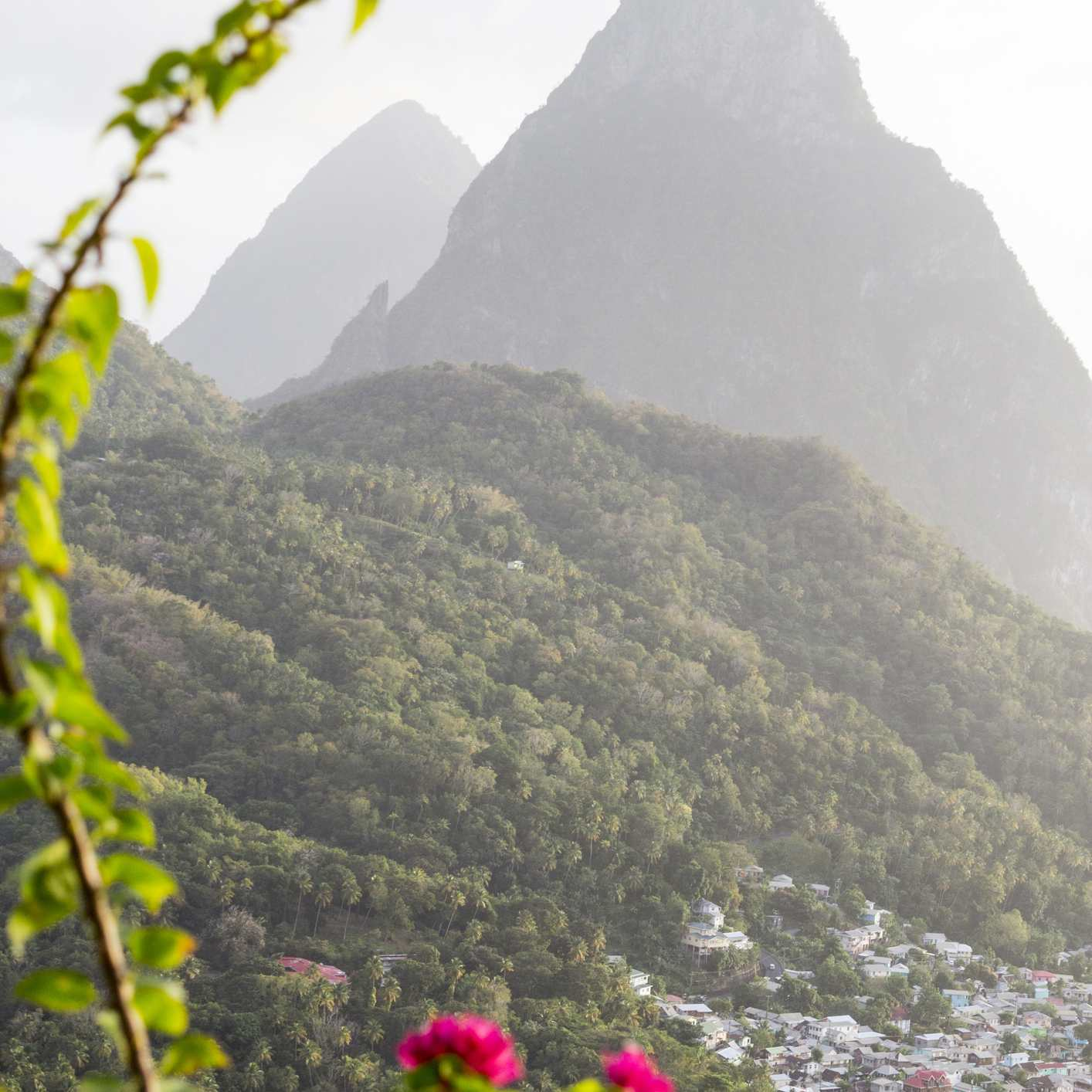 The Pitons mountains and Soufriere with bougainvillea in foreground