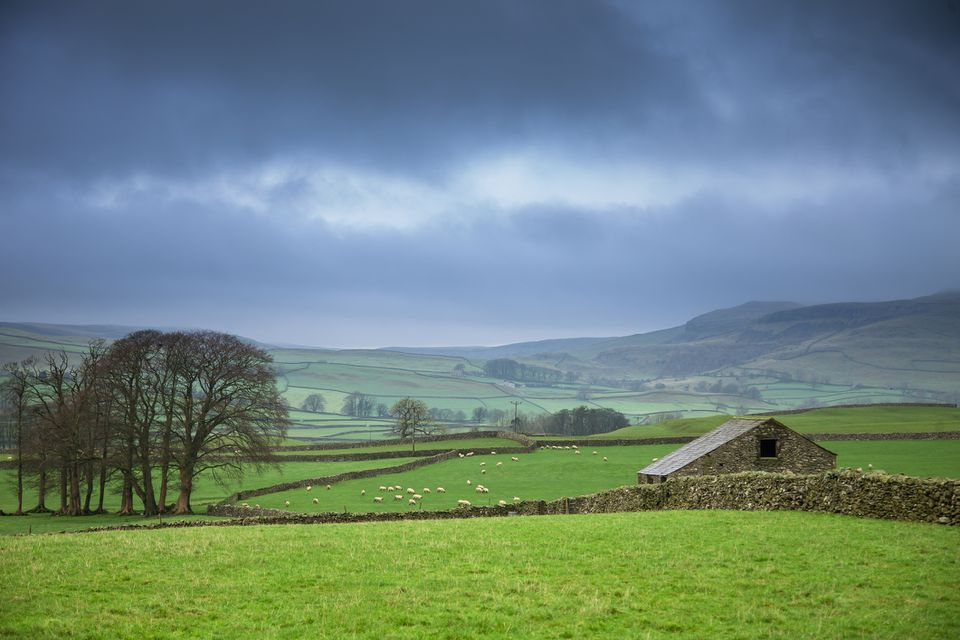 Rolling countryside in the Yorkshire Dales, just outside the small village of Austwick.