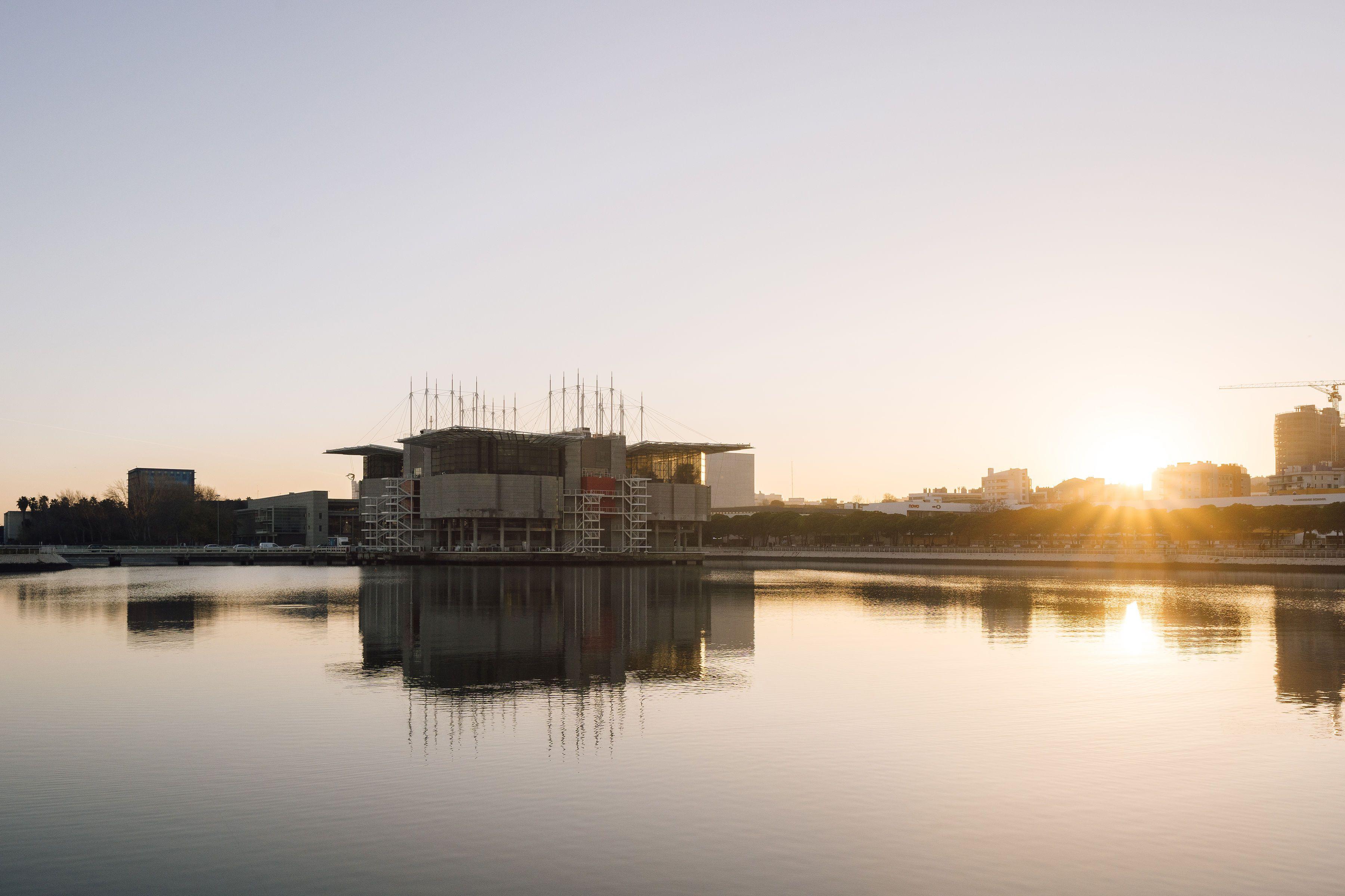 Lisbon Oceanarium: The Complete Guide