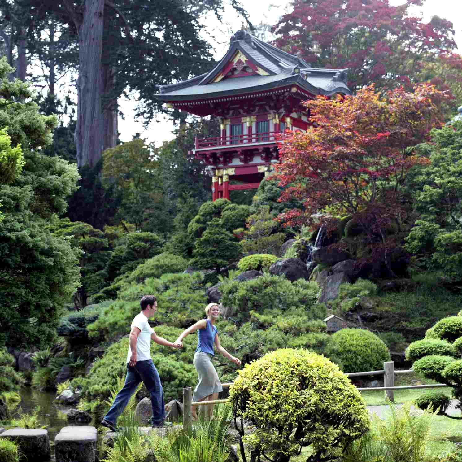 japanese tea garden - Golden Gate Park Japanese Tea Garden