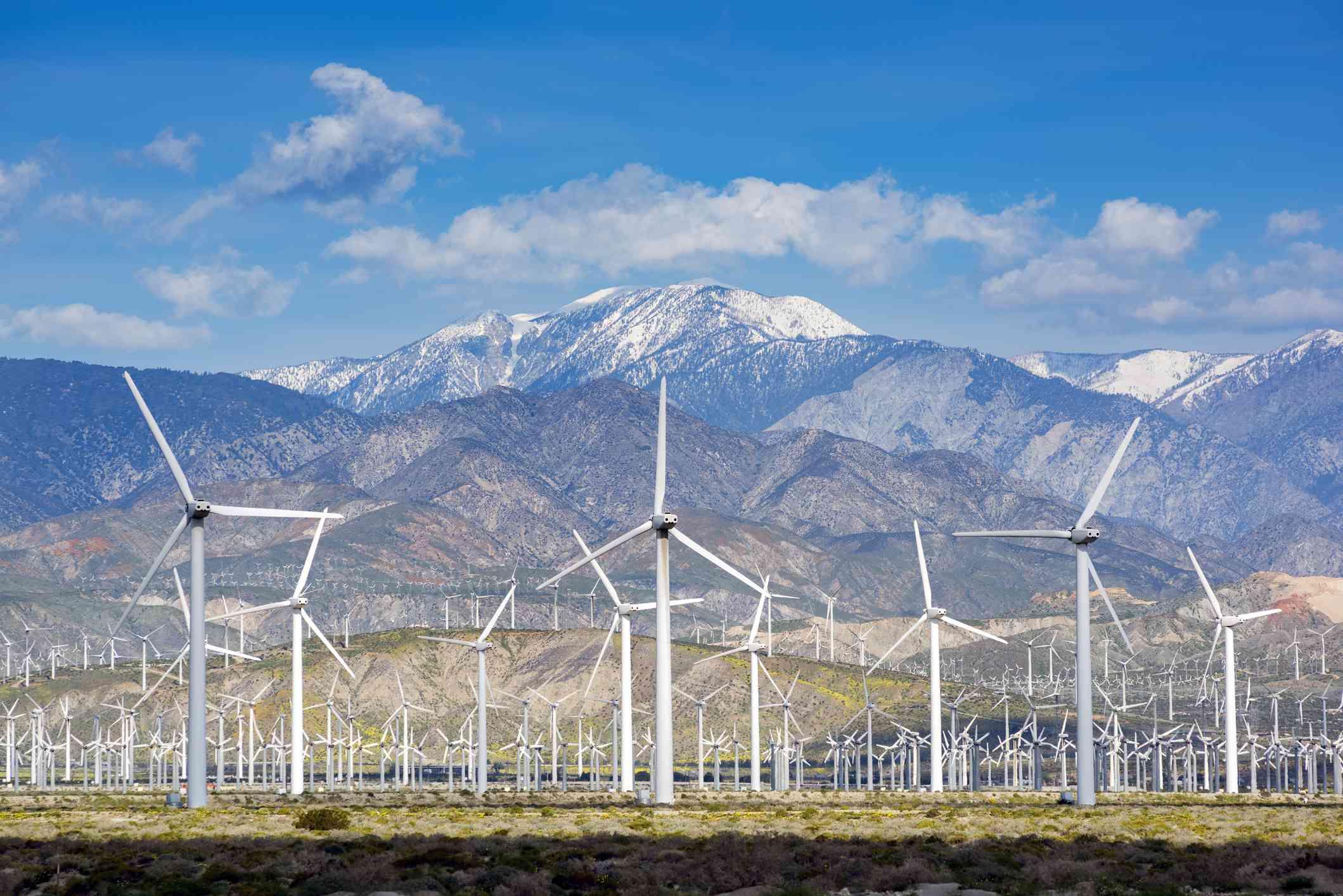 Wind turbines in the San Gorgonio Pass near Palm Springs