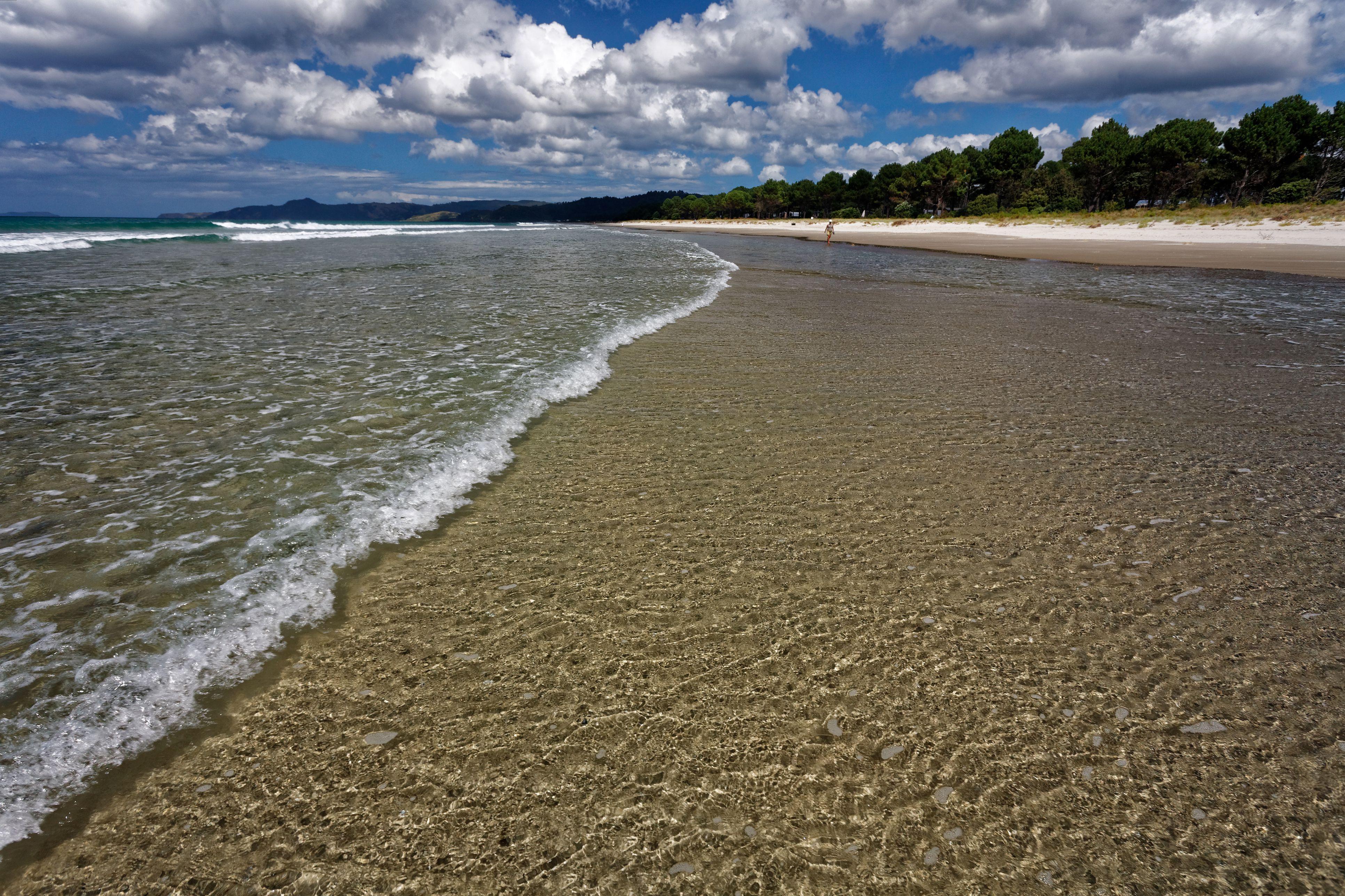 Matarangi Beach in the Coromandel