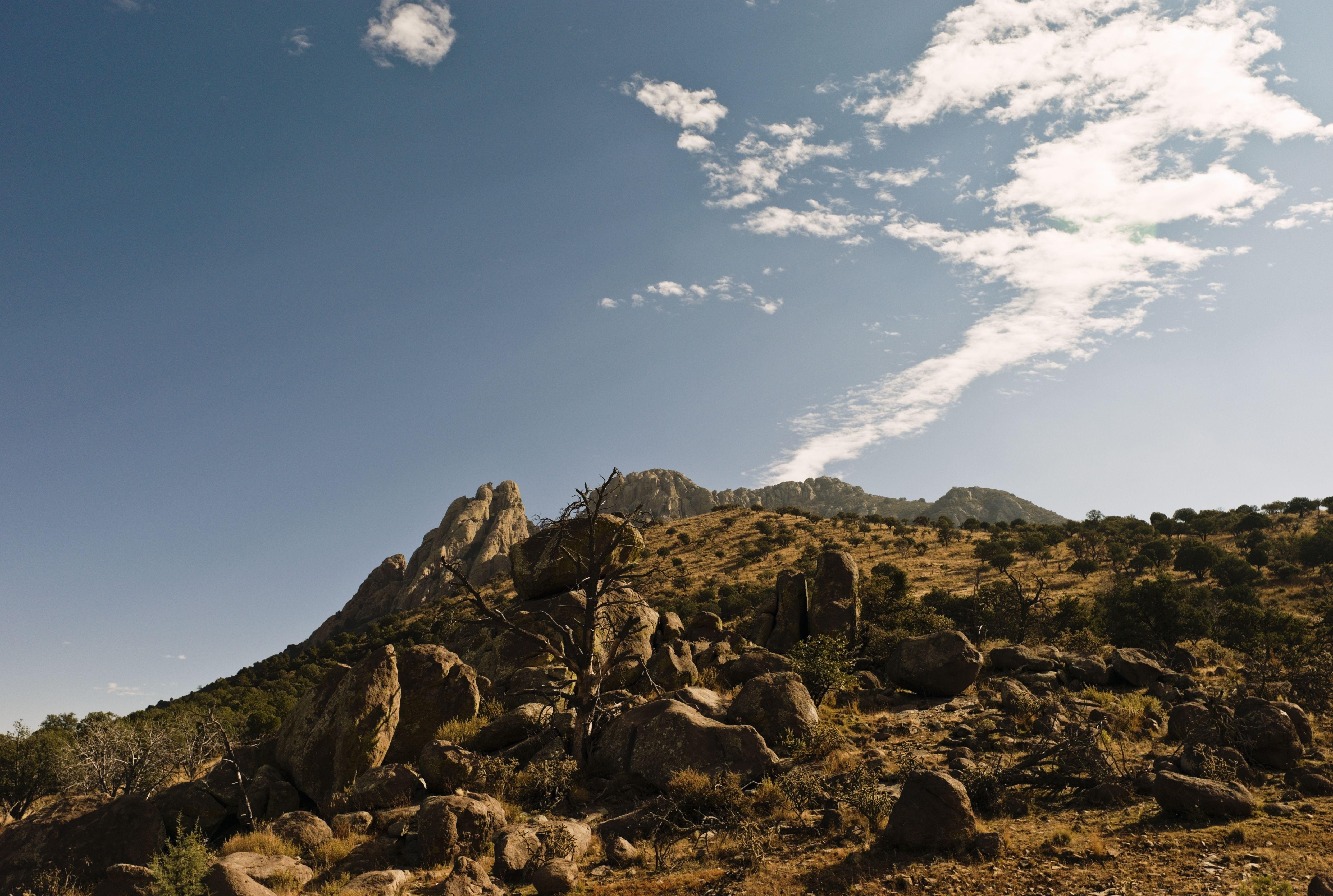 USA, Texas, Davis Mountains, low angle view