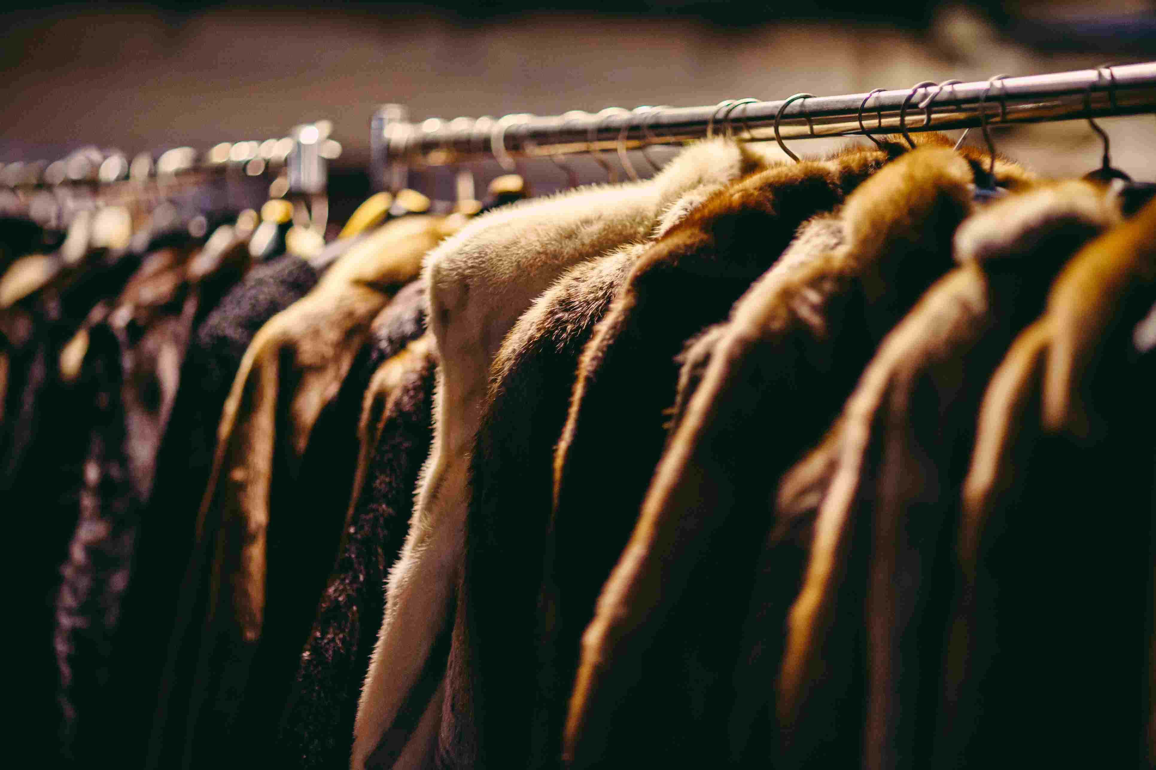 Hanging fur coats on clothes rack in Moscow