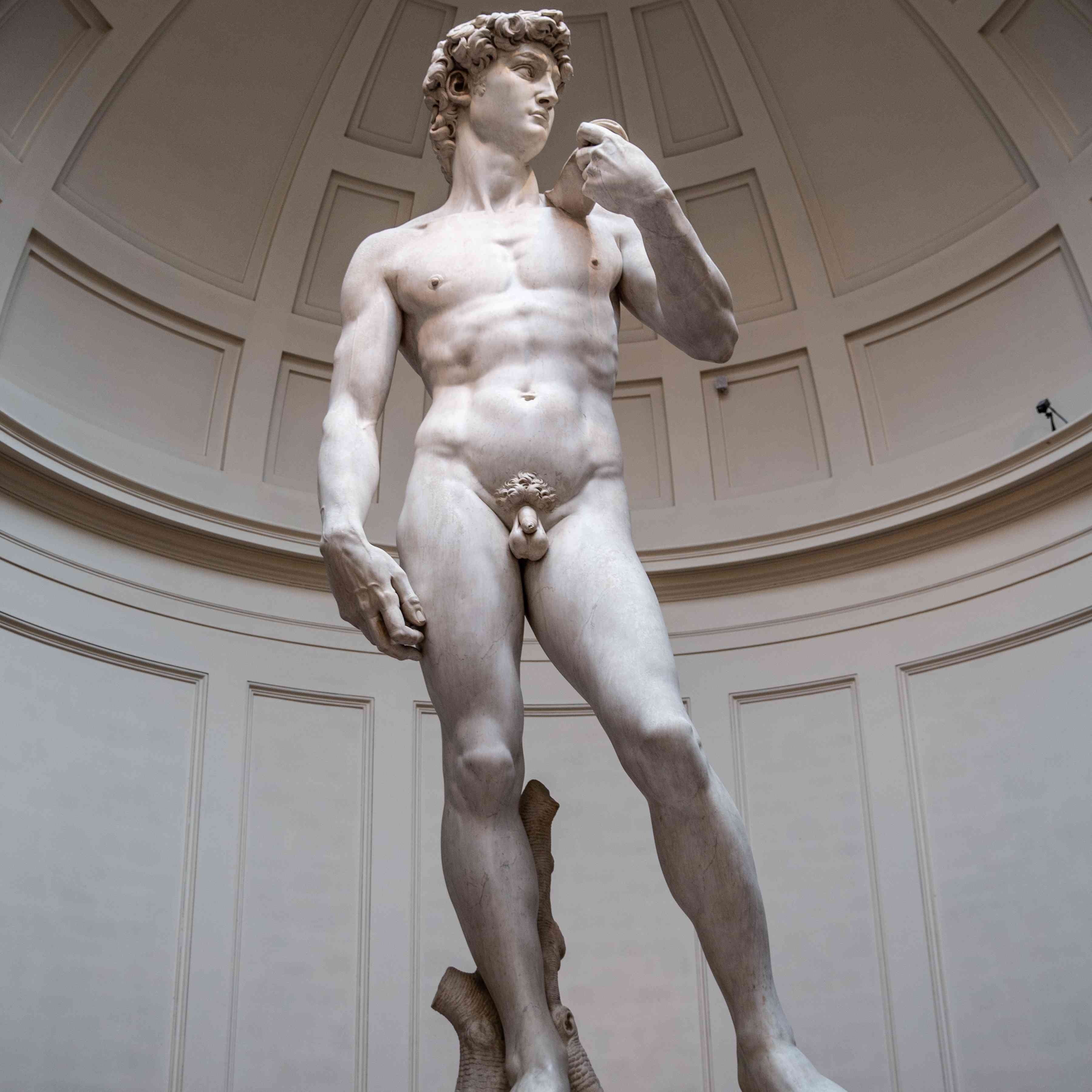 Michelangelo's David in the Galleria dell'Accademia, Florence Italy