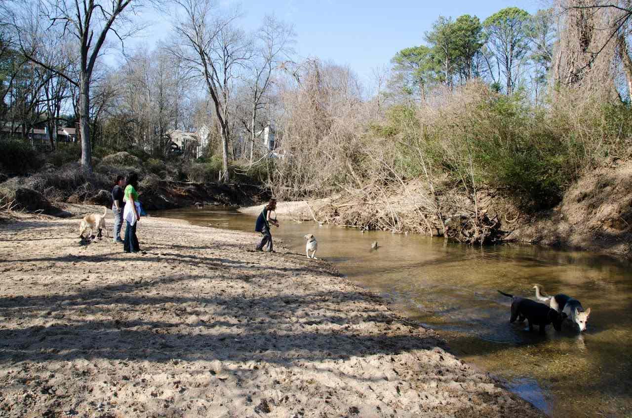 Herbert Taylor Park and Johnson Nature Preserve