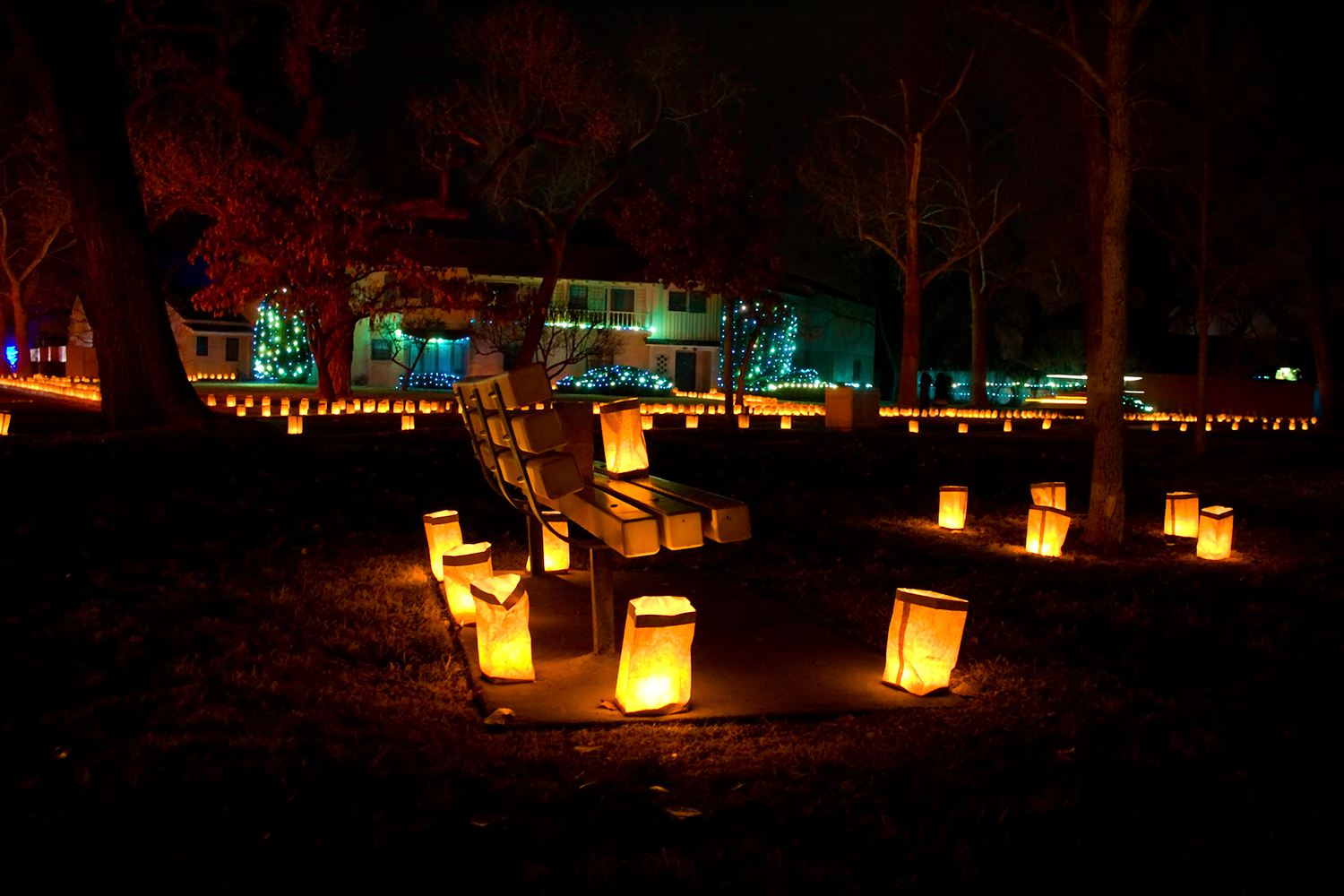 Luminarias and bench Forest Park