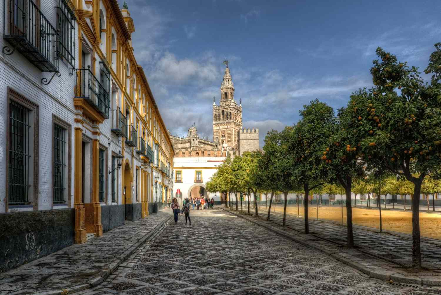 View of the Giralda and the Seville Cathedral