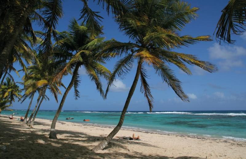 Plage Anse Petite Rivieire, Guadeloupe