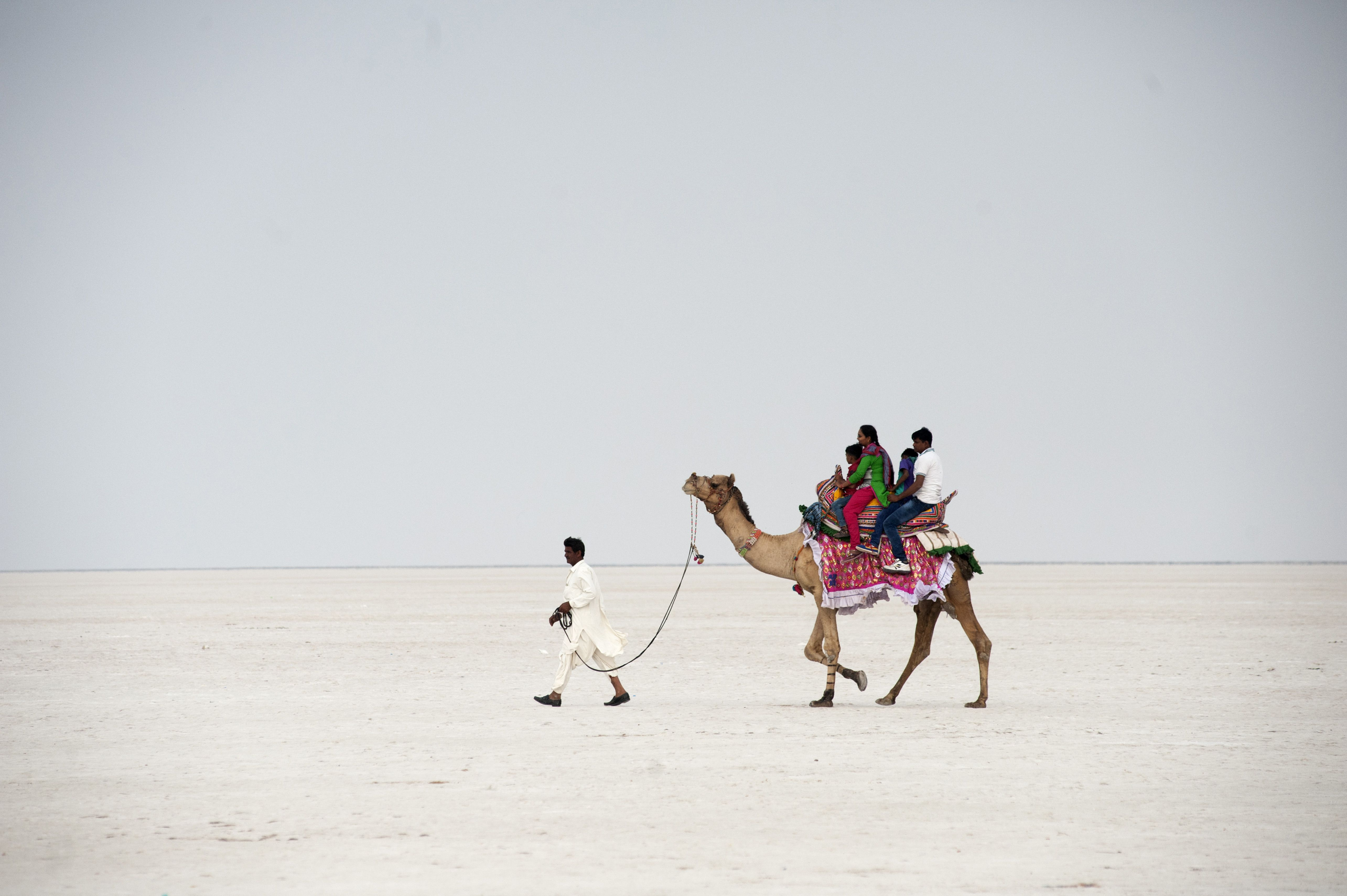 13 Top Attractions and Tourist Places to Visit in Gujarat